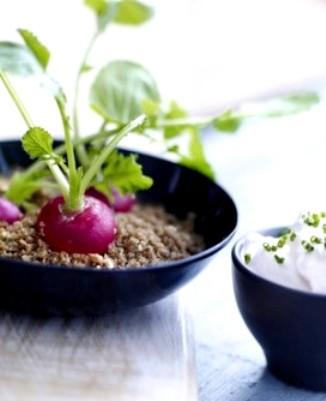 """radis frais planté dans un """"sable"""" de miettes de pain gillé"""
