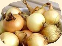 oignons grelot